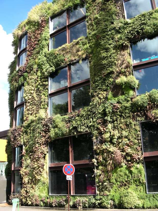 Mur végétal Musée du Quai Branly Paris