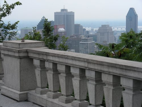 Belvédère du Mt-Royal