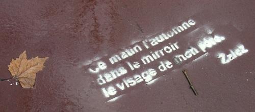Pochoir Zalez Toulouse