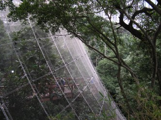 Volière de Hong Kong