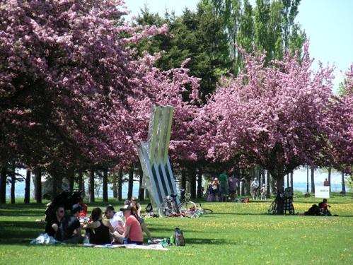 Au Parc René-Lévesque à Lachine