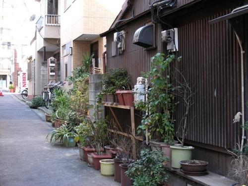 Verdissement Tokyo