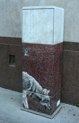 Camouflage urbain à Québec