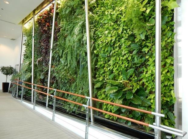 Montréal Mur végétal Biosphère