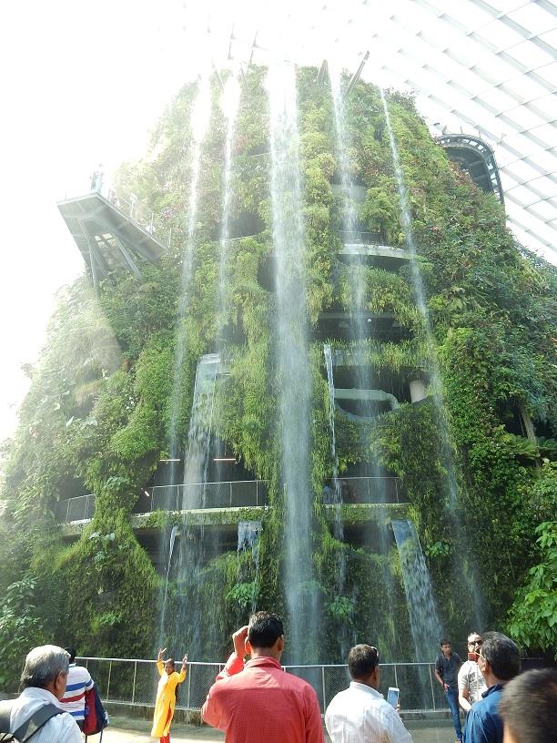 Singapour Mur végétal et végétalisé