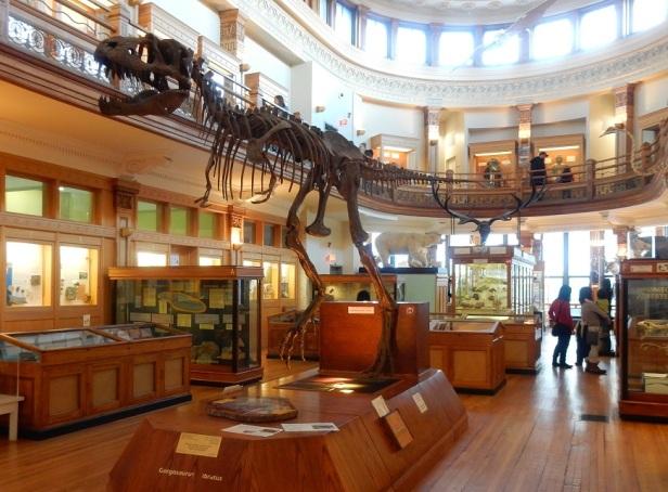 Musée Redpath Montréal