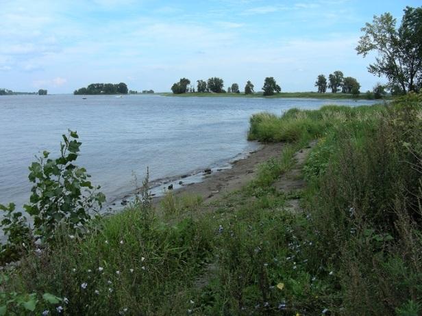 Îles du fleuve Montréal Gala de l'environnement