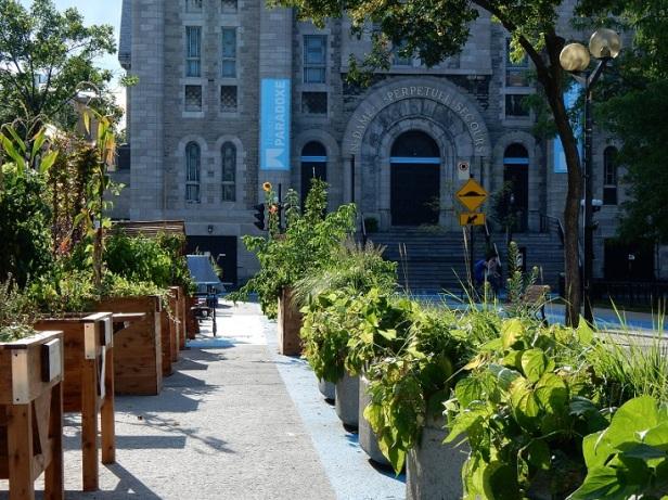 Théâtre Paradoxe Montréal Gala de l'environnement