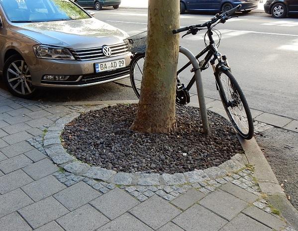 Bamberg arbre sur rue
