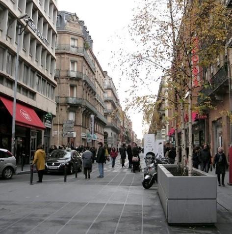 Toulouse Bacs a arbres