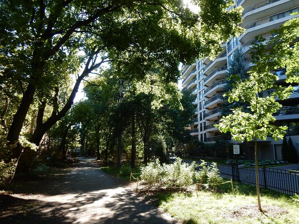 Parc Marie-Gérin-Lajoie Boisé Montréal